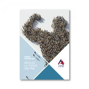 CGPME – Rapport d'activité 2015
