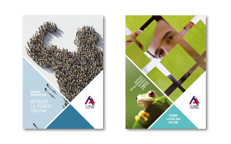 Rapports annuels, rapports RSE, rapports développement durable